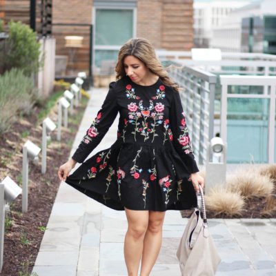 Embroidered Dress & Some Affordable Embroidered Finds