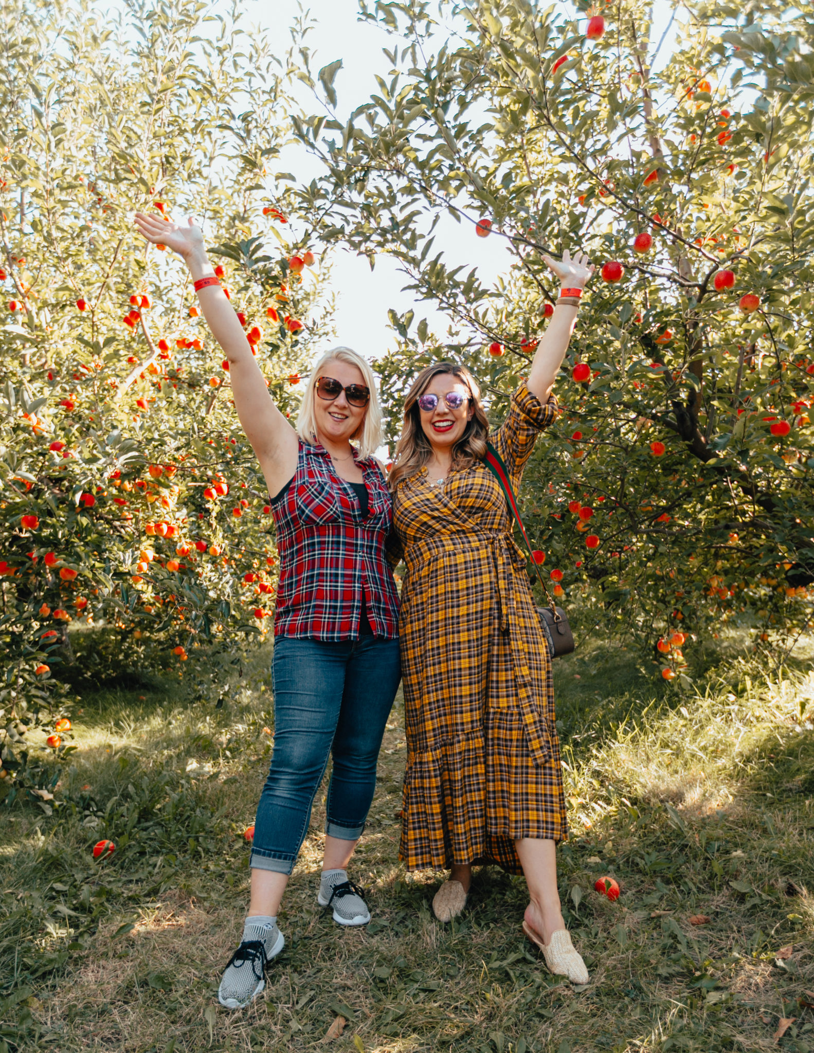 County Line Apple Orchard & On Mondays We Link Up (#135) by popular Chicago blog, Glass of Glam: image of a woman standing with her friend at the County Line Apple Orchard and wearing an Anthropologie Dalton Wrap Maxi Dress, Grande Cosmetics GrandeLIPS Plumping Liquid Lipstick, Semi-Matte, Warby Parker Haskell sunglasses, Steve Madden Mattis Textured Mules, and Gucci GG Supreme messenger bag.