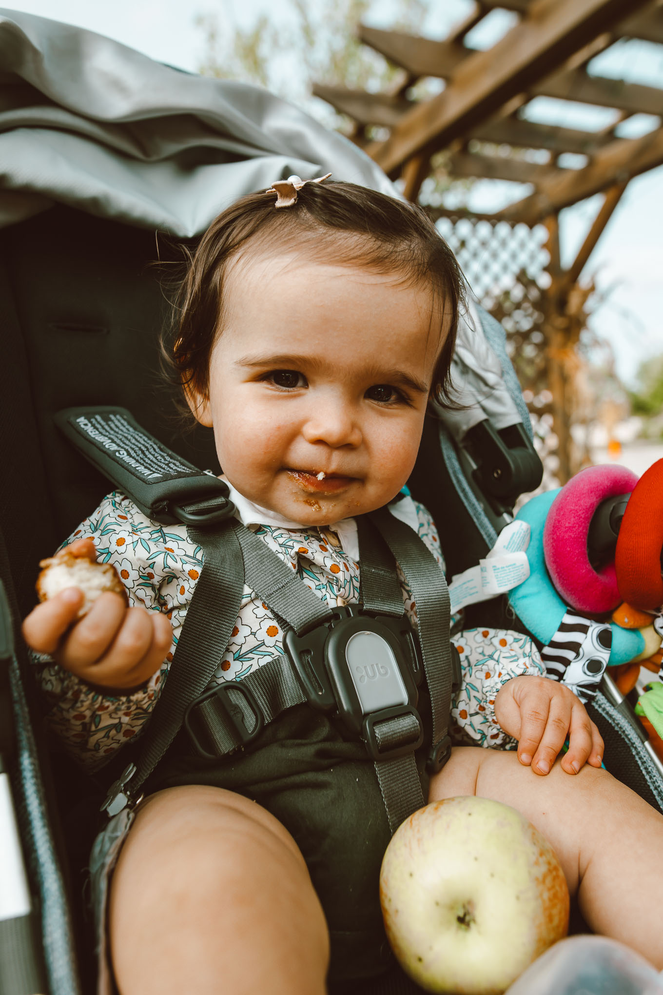 Apple Picking by popular Chicago lifestyle blog, Glass of Glam: image of a 1 year old girl sitting in a stroller and eating an apple cider donut.