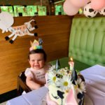 Sidney's Cow-Themed Birthday Party